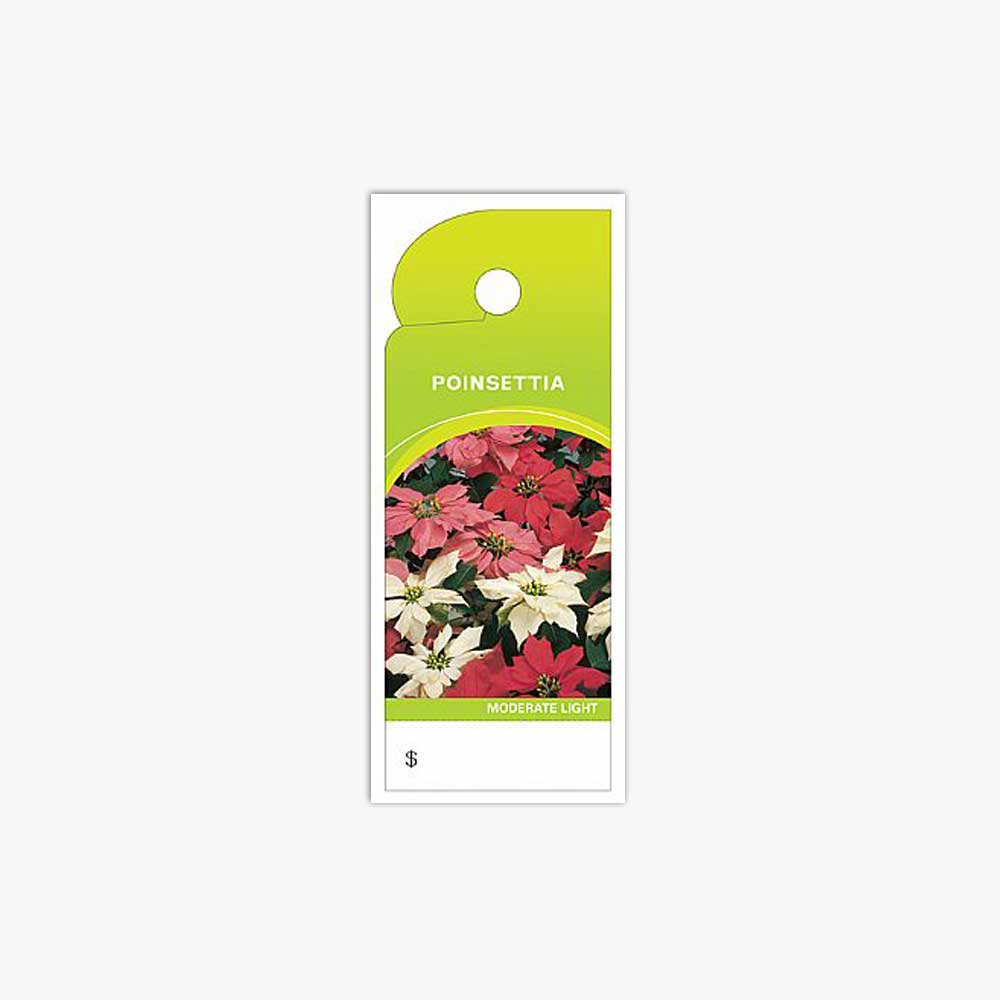 CARE TAGS, POINSETTIA