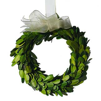 MINI BOXWOOD CIRCLE WREATH 6""