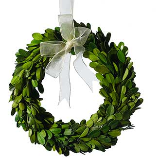 MINI BOXWOOD WREATH 7.5""