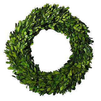 BOXWOOD CIRCLE WREATH 14""