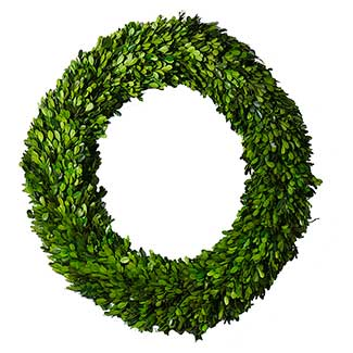 BOXWOOD CIRCLE WREATH 24""