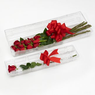 "20"" CLEAR SINGLE ROSE BOX"