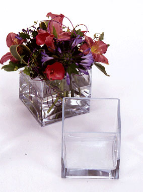 Glass Vases, Square