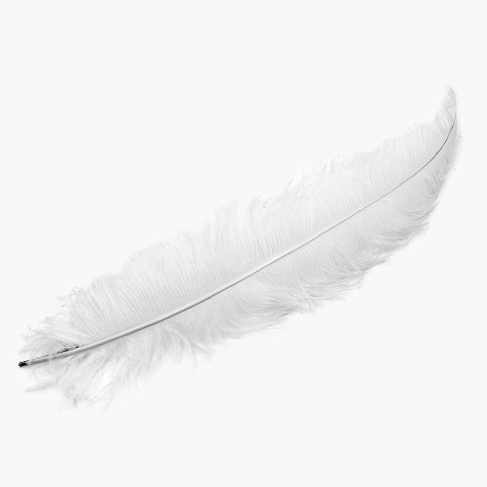 "18-22"" OSTRICH FEATHERS,WHITE"