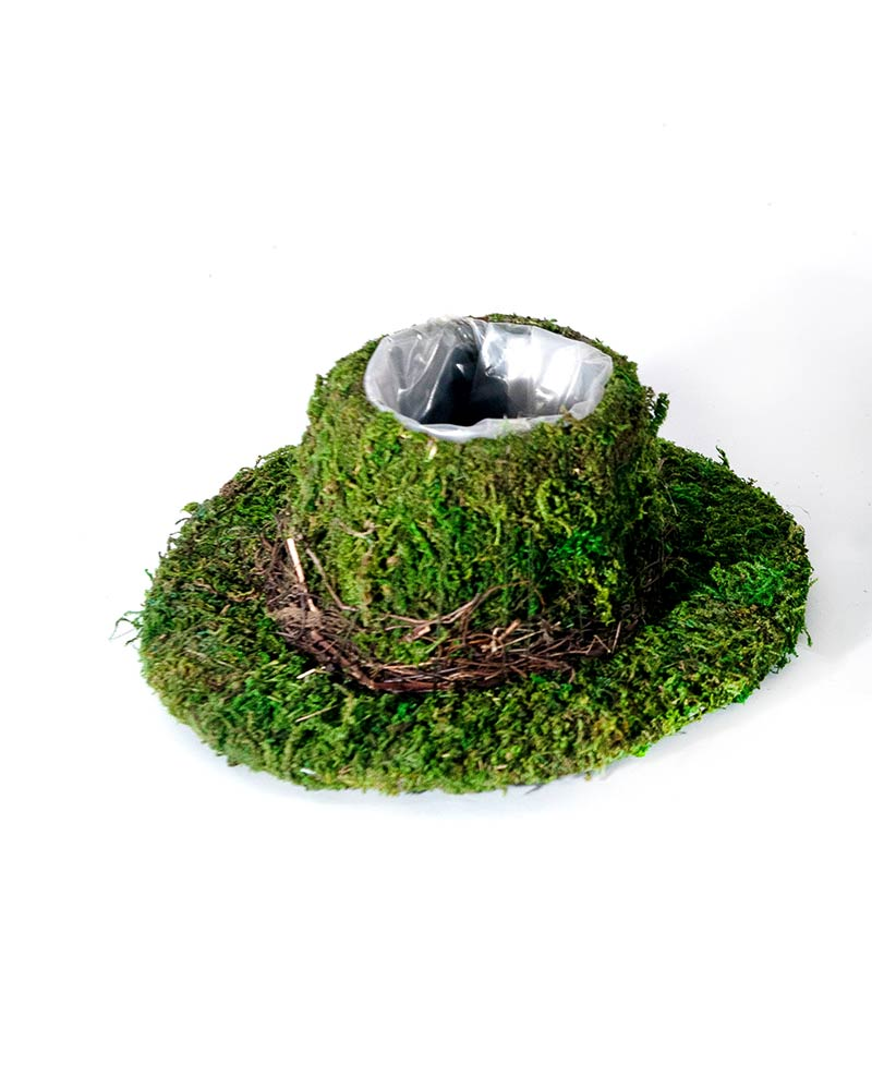 Moss Containers & Shapes