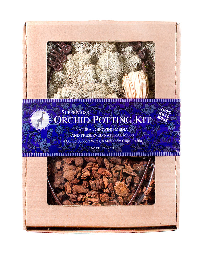 ORCHID KIT REINDEER DB4 NA 12,NATURAL