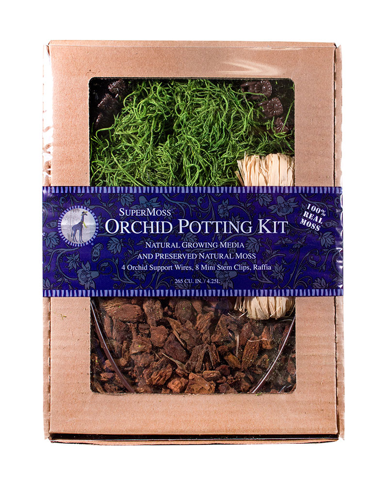 ORCHID KIT SPANISH DB4 GS 12/,GRASS GR