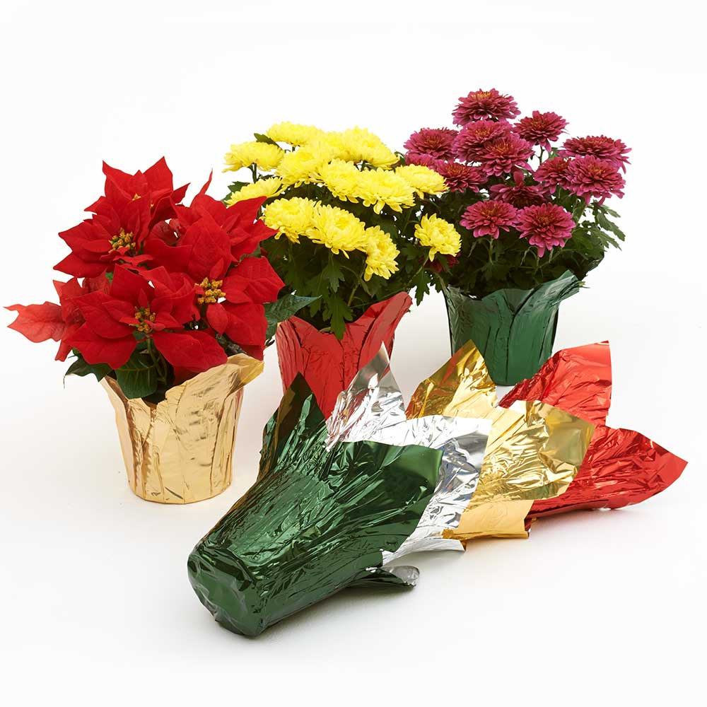 6 Quot Foil Pot Cover Floral Supply Syndicate Floral Gift Basket And Decorative Packaging Materials