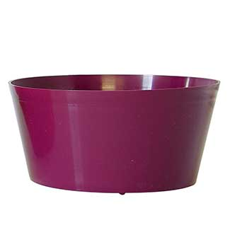 "4"" DISH GARDEN, PURPLE"