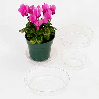 "10"" CLEAR PLASTIC SAUCERS"
