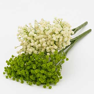 GYPSOPHILIA BUSH