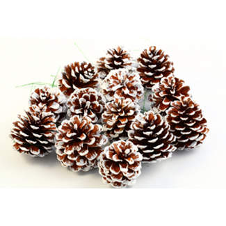 WHITE WIRED PINE CONES